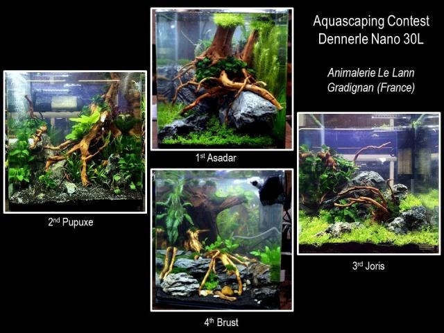 Concour aquascaping chez Le Lann 807367bilan