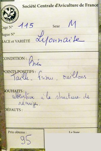 2014 - salon de l'Aviculture de Paris du 22/02/2014 au 02/03/214 - Page 4 807445P1130668
