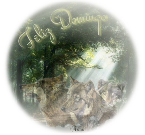 Lobos de Arga, pueblo gallego con una maldicion sus moradores se convierten en lobos cada cien años 827478domingo