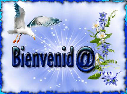 cartel bienvenid@ - Página 4 8341010Bienvenid