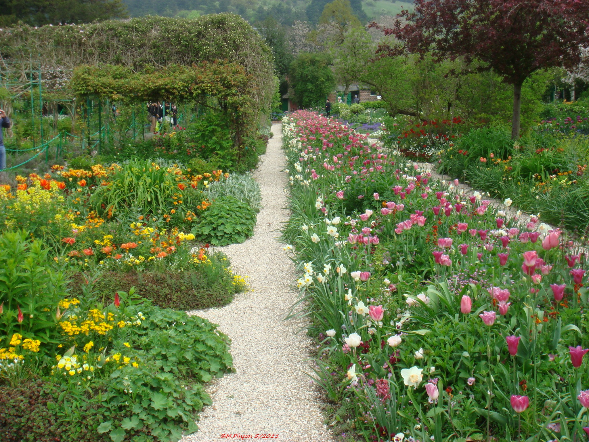 """GIVERNY"" chez Claude MONET 834726DSC03107"
