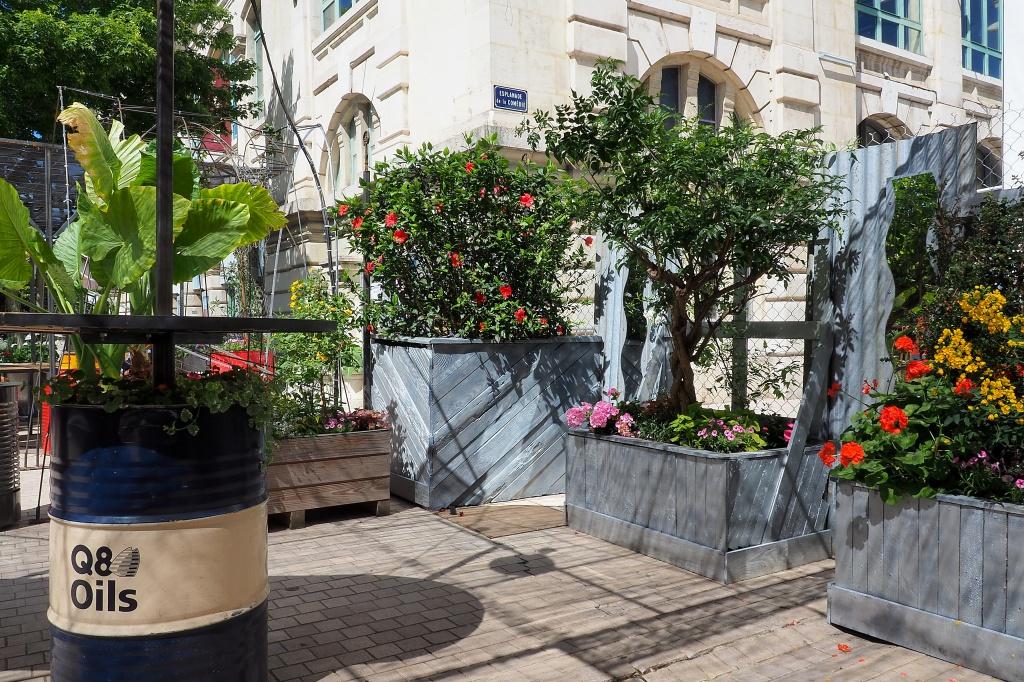 Jardin éphémère 836155P5141642a