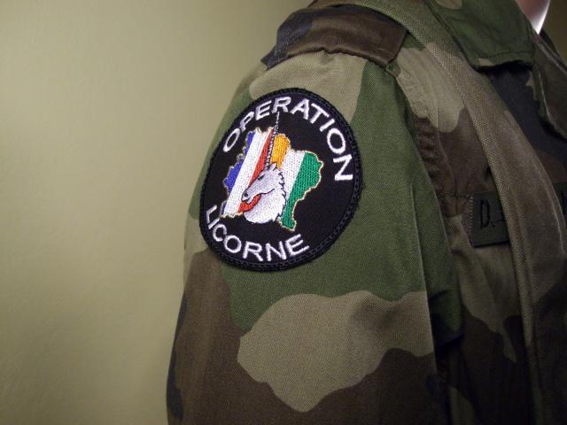 Operation Licorne display 838000IMGP0015