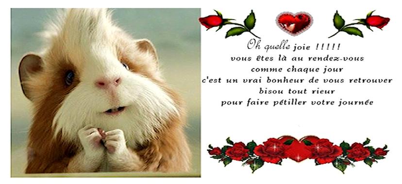 Bon Mardi 838330480ef110
