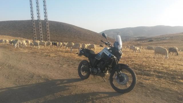 XT660ZA DZ 83879114082016728