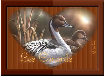 Cours-9-PSP-Masque coeur 839249canards22052017