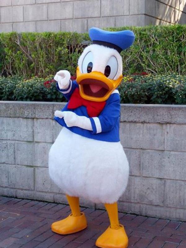 Disneyland Resort (Californie)et Universal Studio Hollywood du 29/10/2012 au 09/11/2012  8417377475848996551803771139719910n