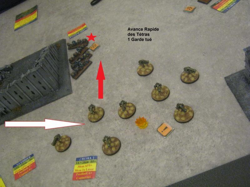 [Epic 40K] Campagne Narrative : Assaut sur Zebra 842635IMG0439