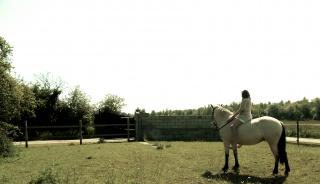 Présentez-nous vos chevaux ! <3 844559ShootingFB28