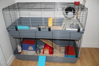 Cage à lapin pour mes rats 845141IMG1612