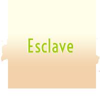 Esclave F Validée