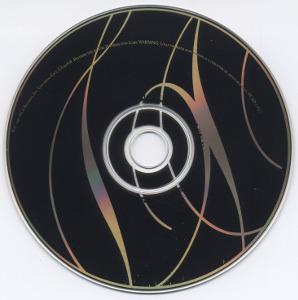 CDs inconnus de collaborations musicales avec d'autres artistes 852351DonnaDeloryCDsmall
