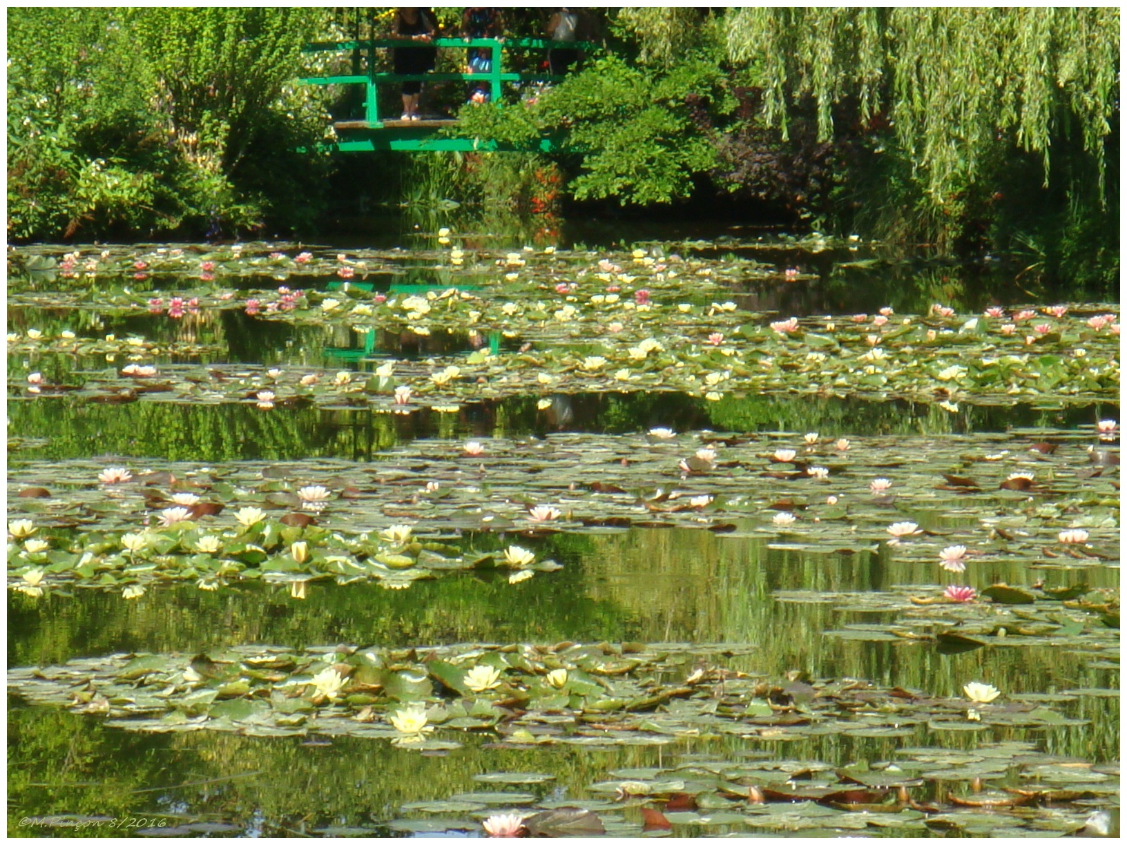 """GIVERNY"" chez Claude MONET 856154DSC010904"