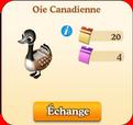 Oie Canadienne / Oie Reconnaissante 859465Sanstitre10