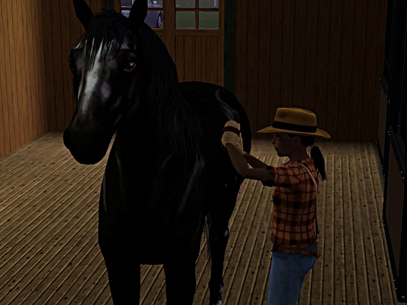 "[Challenge] Teens and Horses ""Sims 3"" - Page 3 863385Polkanerveuse"