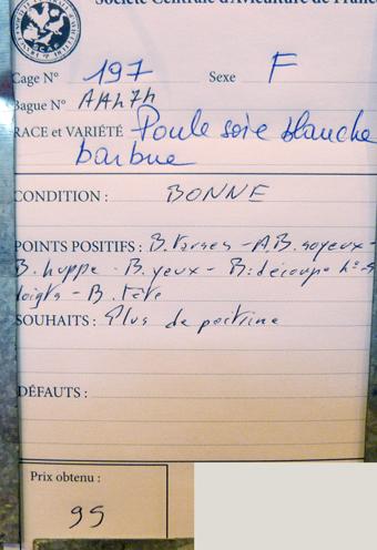 salon de l'Aviculture de Paris du 22/02/2014 au 02/03/214 - Page 4 863974P1130679