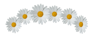 "~ Png ""Flower Crown"" ♥ ~ 871854PrettyLadySwag1"