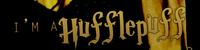 {Poufsouffle, 6ème année, époque Harry Potter}