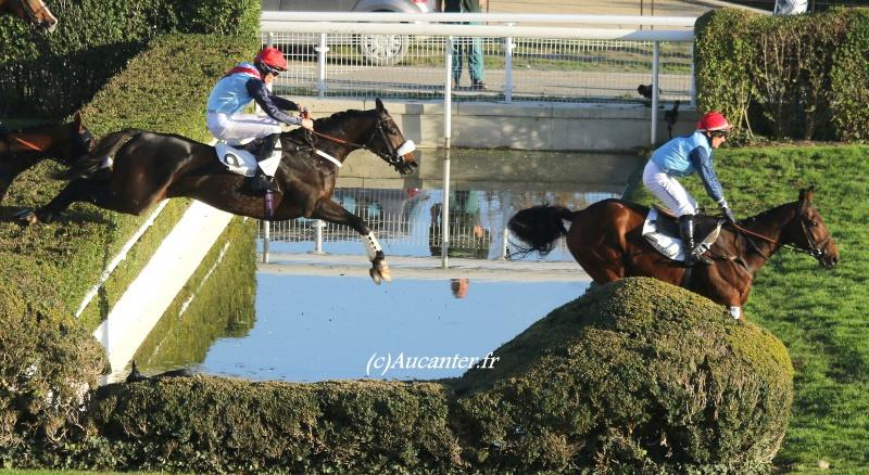 Photos Auteuil 6-11-2016 8842215J6A0625