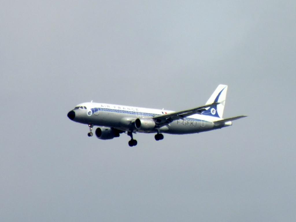 [F-GFKJ] A320 RetroJet Air France - Page 4 887854Venisen1645