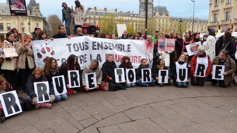 13 - Marche Contre La Fourrure - Paris 24 novembre 2012. 890171P1010982