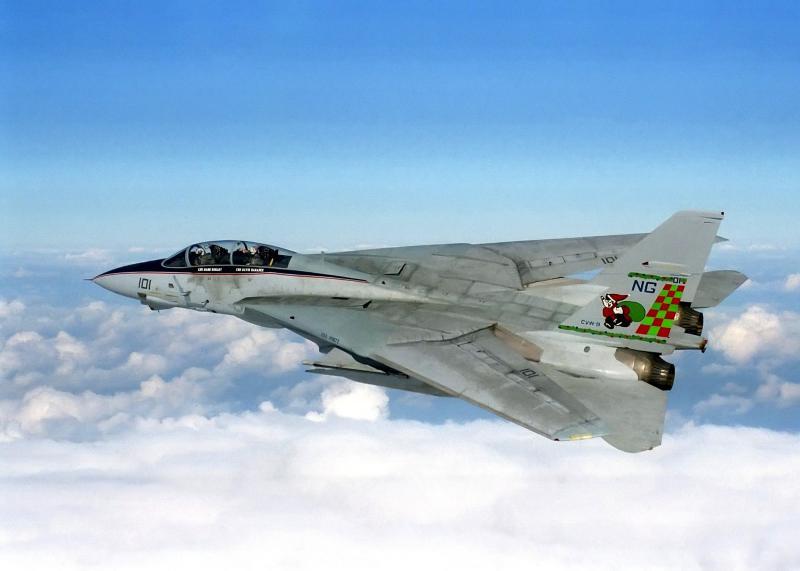 BOEING F/A-18E et F SUPER HORNET  893260GrummanF14Tomcat