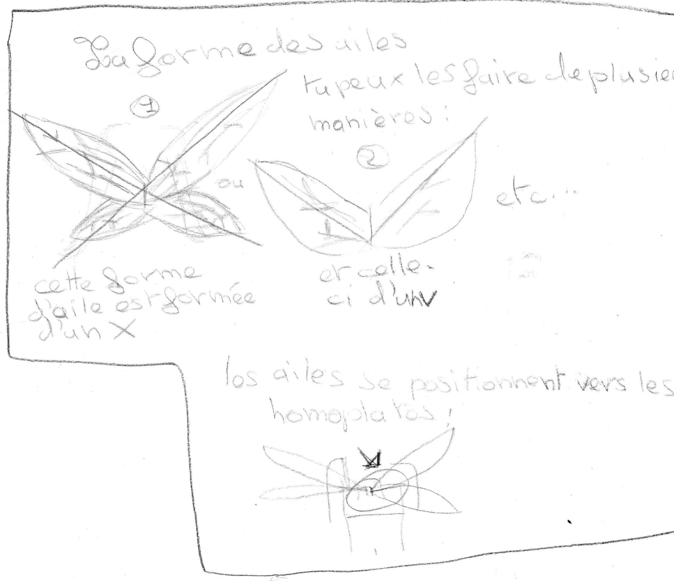 Comment dessiner des fées ? 897317DocKA112