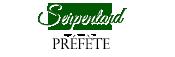 6ème année à Serpentard & Préfète