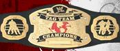 WeW Tag Team Champion
