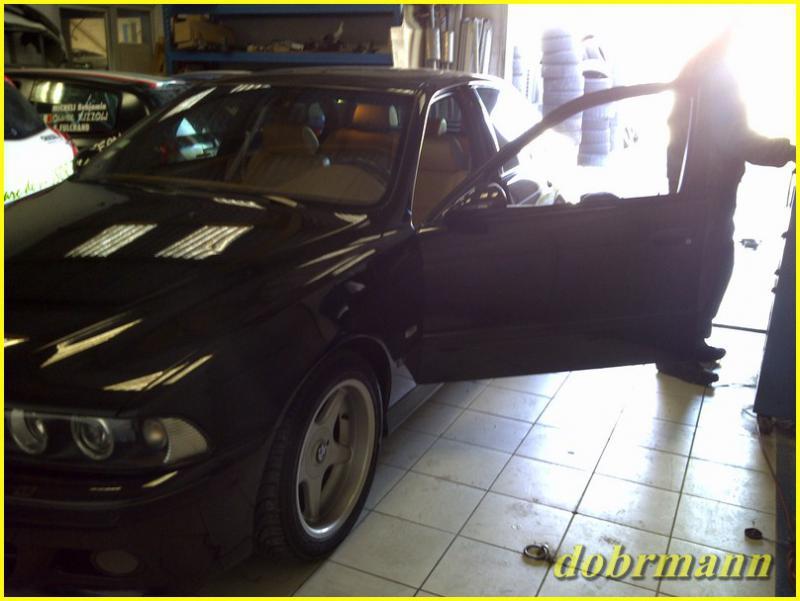 [BMW 530 d E39] Downpipe 901559IMG2011020400049Copier
