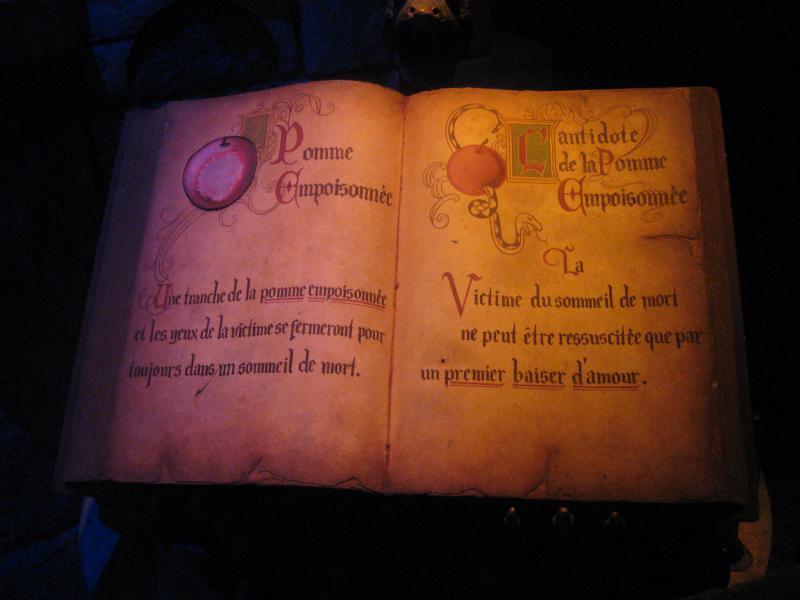 [Disneyland Paris] Disneyland Hotel - chambre Castle Club (8-10 décembre 2010) (début du TR p.9) - Page 8 908386IMG2033