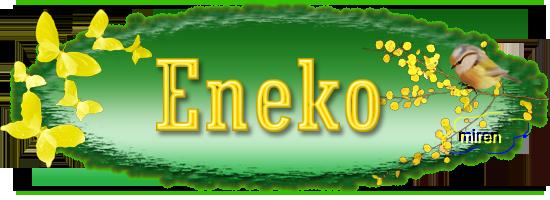 Nombres con E - Página 3 9120550Eneko