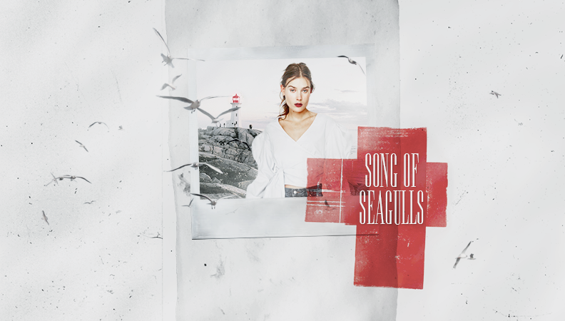 Song of Seagulls