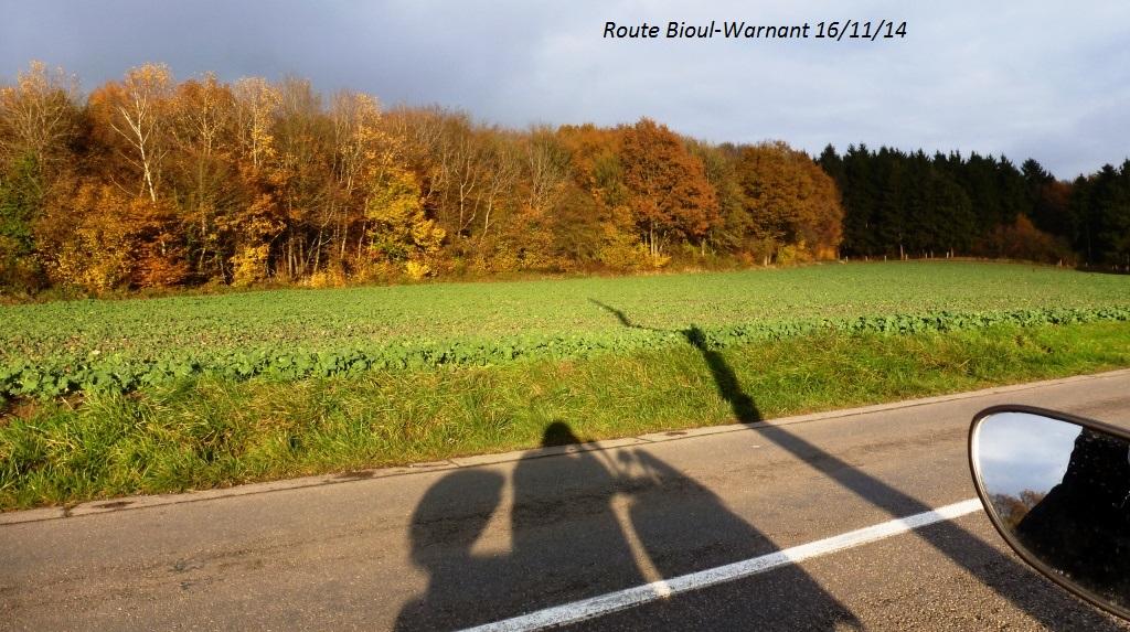 CR imagé de la balade du 16/11/14 autour de Dinant 9153171128