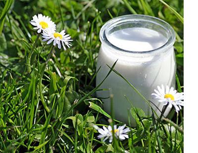 Fleurs,....fruit,.....tout ce qui se mange,...se boit....ou qui vient de la nature.......... - Page 3 926924yaourtjpg