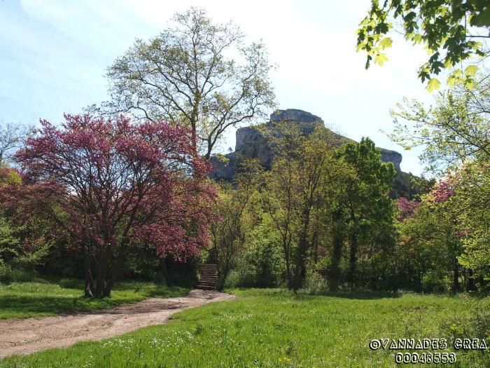 """La Vallée de St Pons """" La Vallée Rose """" à Gemenos Bouches du Rhône ♥♥♥ 93197745"""