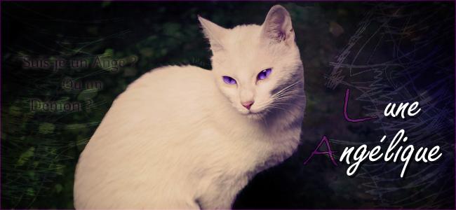 Une galerie au couleur lilas~ 932246luneangliquebylilas