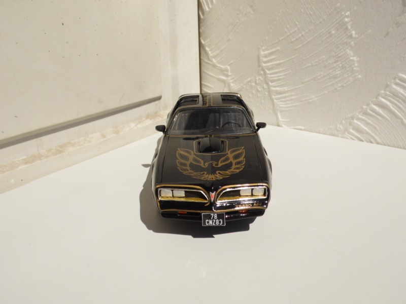 Pontiac Trans-am 77. 934224SAM4943