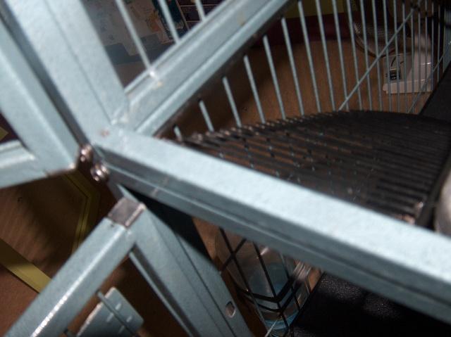 Vends cage nation 2 pour furets (à voir pour rats) 939659HPIM2690