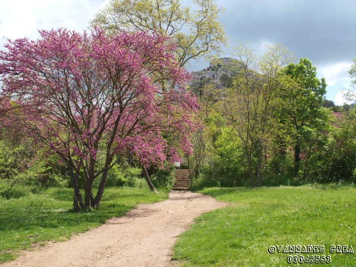 """La Vallée de St Pons """" La Vallée Rose """" à Gemenos Bouches du Rhône ♥♥♥ 94153510"""