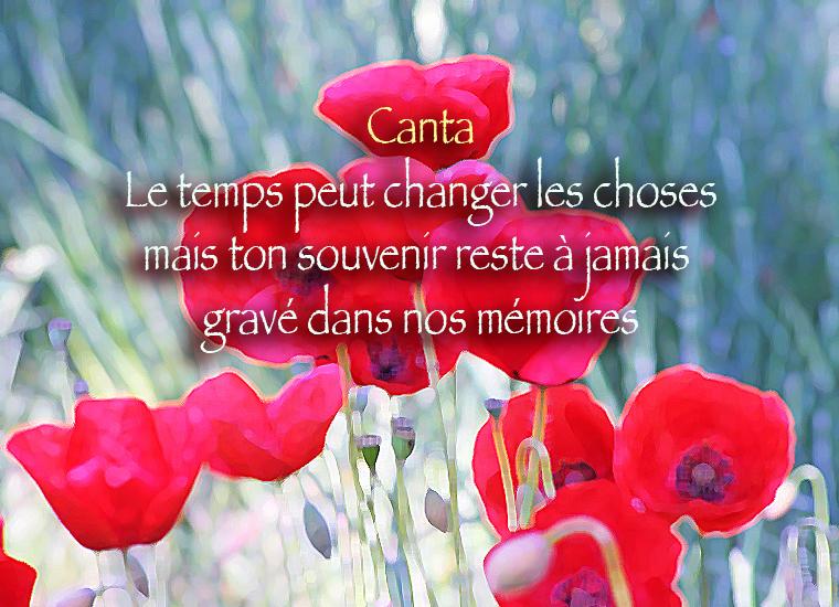 Pour CANTALINE... - Page 2 941976Cantamai2014