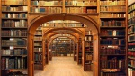 la bibliothèque [RP]