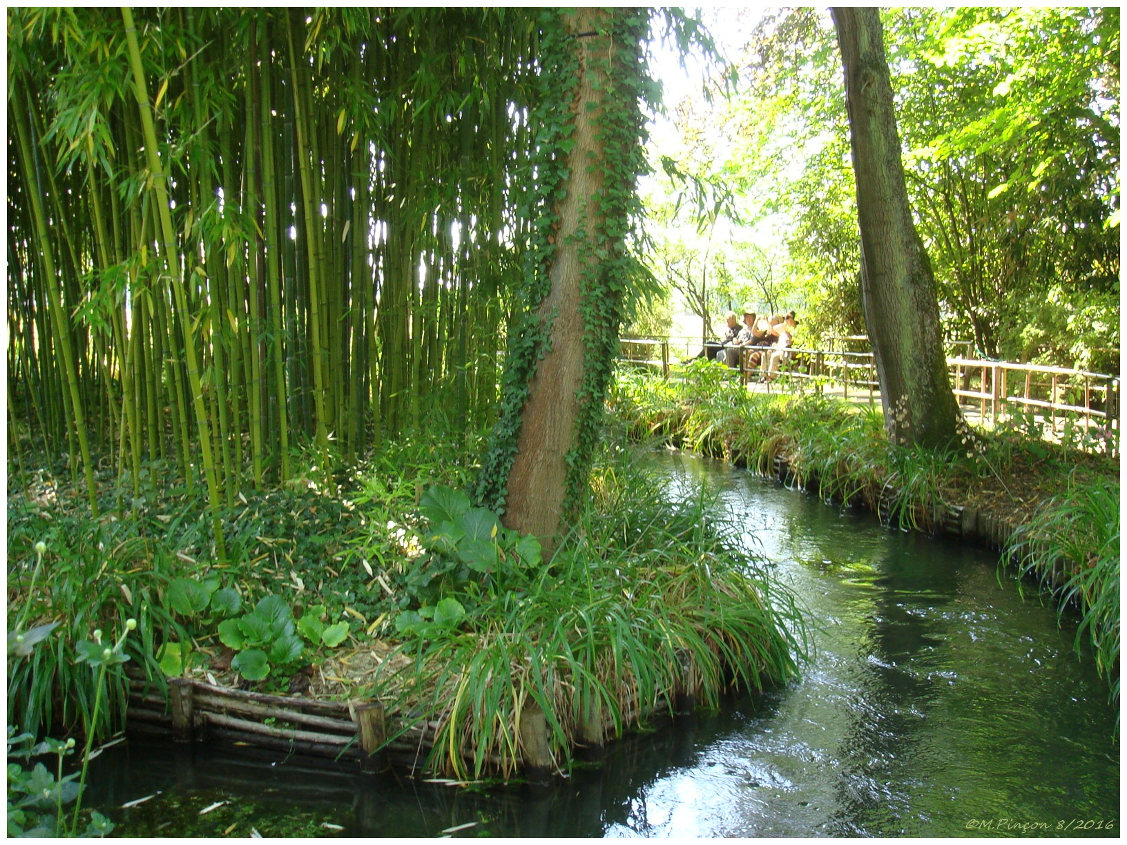 """GIVERNY"" chez Claude MONET 946579DSC010894"