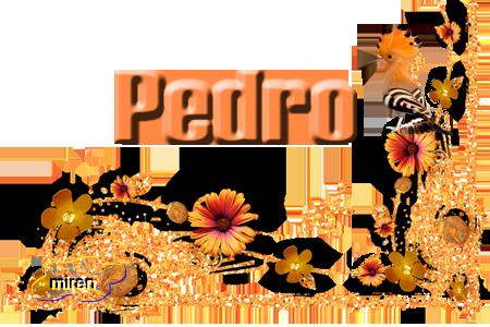 Nombres con P - Página 4 9485790Pedro
