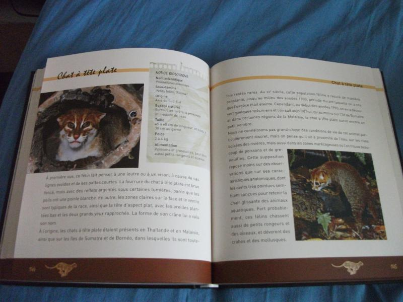Livres ! - Page 3 950228DSCF8029