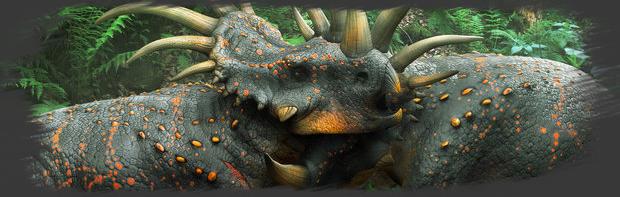 Elevage des Styracosaurus