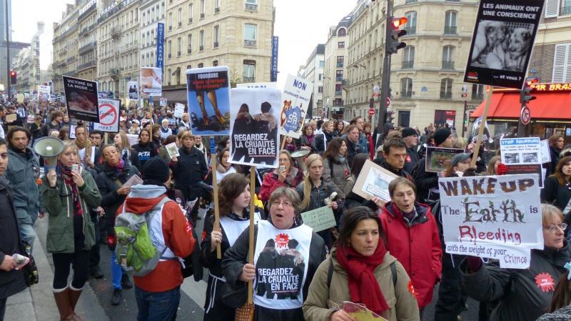 13 - Marche Contre La Fourrure - Paris 24 novembre 2012. 958363P1010085