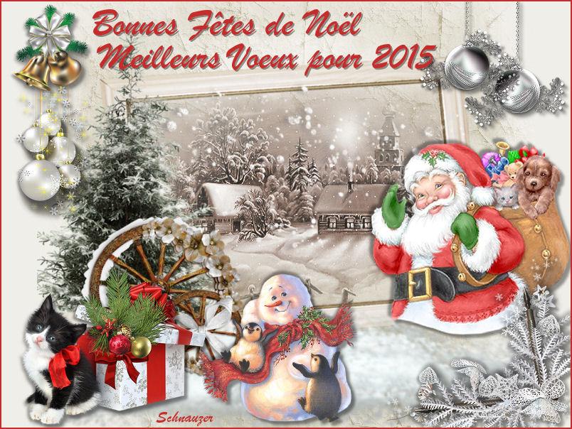 Des Cadeaux pour Noël , jour de l'An etc ...... 962727960332Voeux2015