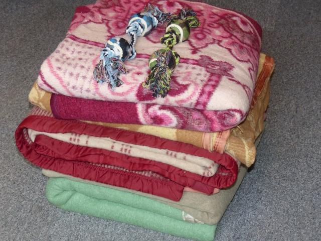 Nourriture, médicaments, jouets, couvertures et divers... 970608P1000798