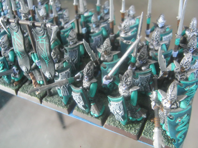 [Vente] LIQUIDATION Skavens, Chaos, Elfes Noirs 971167IMG0060